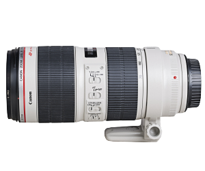 CANON 70-200 F2.8 IS USM II (EF)